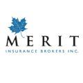 Merit logo color